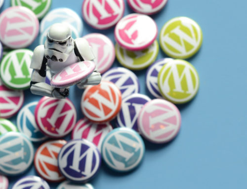 19 percent of the web runs on WordPress!