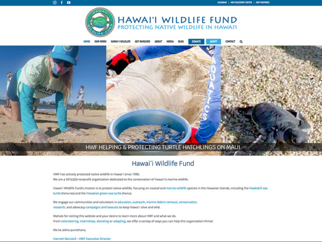 hawaii-wildlife-fund-ritama-web-design-portfolio