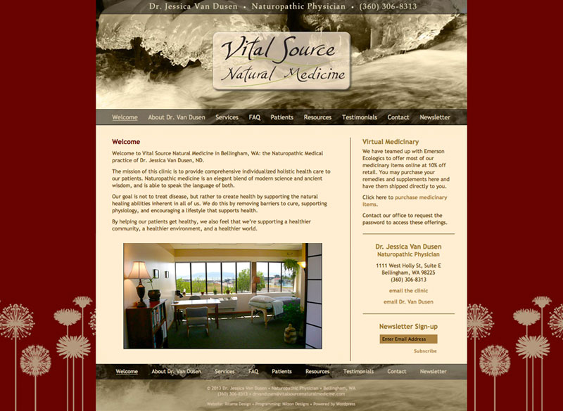 Vital Source Natural Medicine, website by Ritama Design